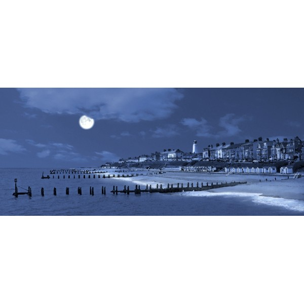 Alan Bedding - Moonlit Southwold