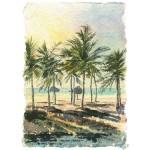 Alan Reed - Sunset Palms, Oman