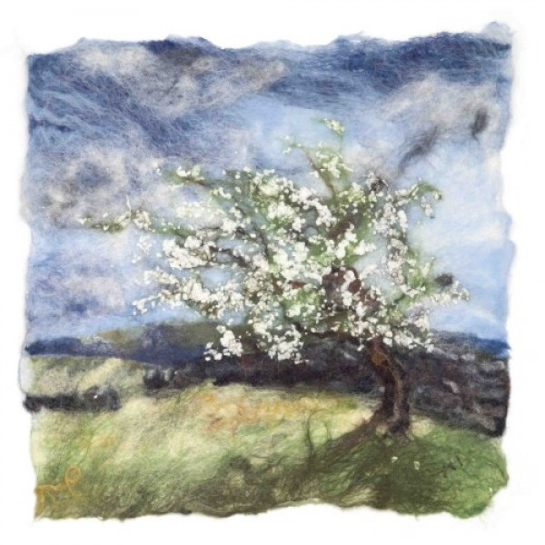 Andrea Hunter - Spring Hawthorn