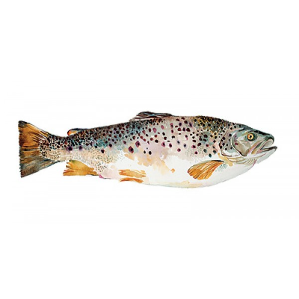 Angie Horder - Brown Trout