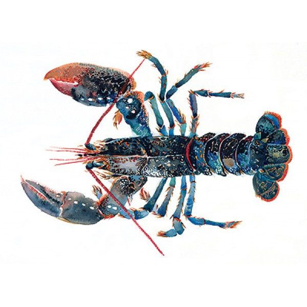 Angie Horder - Lobster I