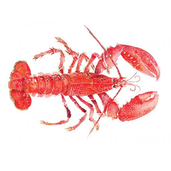 Angie Horder - Lobster II
