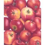 Ann Swan - Apples (Crocketts) Red