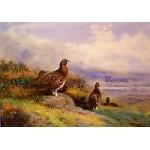 Archibald Thorburn - Above Loch Maree