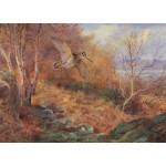 Archibald Thorburn - Autumn at Loch Maree