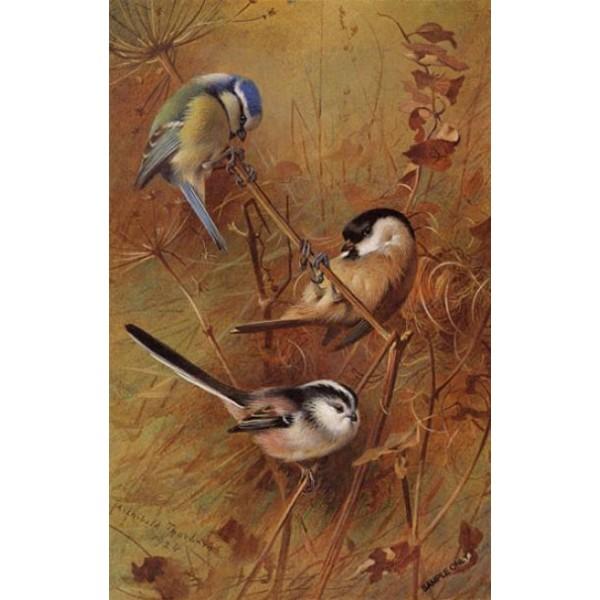 Archibald Thorburn - Autumn