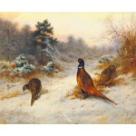 Archibald Thorburn - Cock and Hen Pheasants in Winter