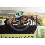 Caroline Cook - Denman - A Circuit To Go