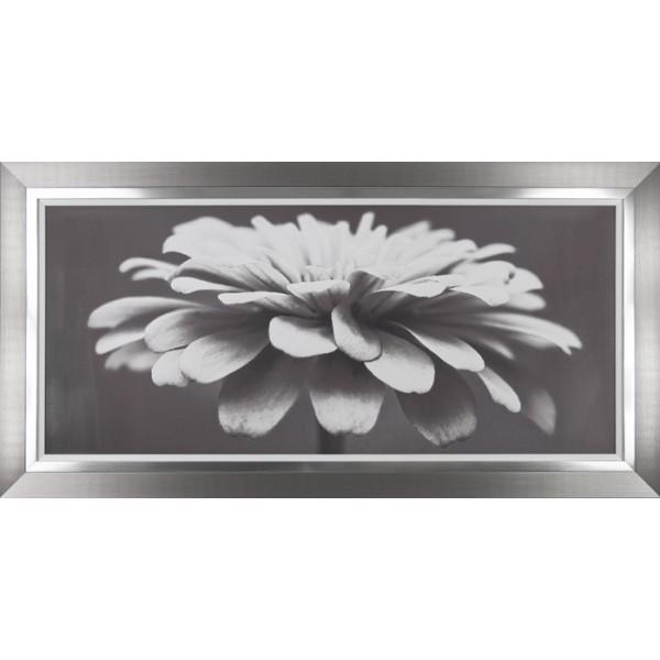 Carolyn Cochrane - Spellbinding Framed Print