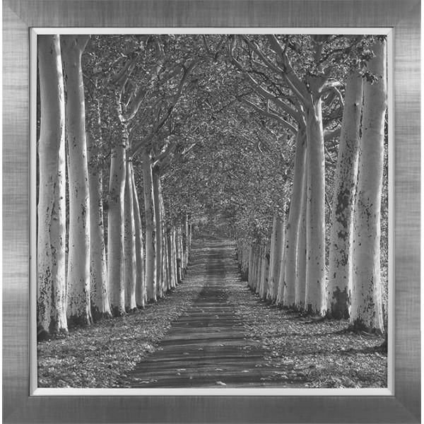 Charlie Waite - Epernay France Framed Print