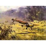 David Shepherd - 656 Squadron, Auster in North Malaya 1962