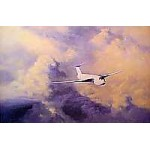 David Shepherd - Afternoon Flight Victor