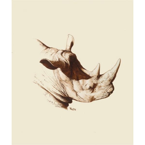 Eric Rowe - Rhino Study