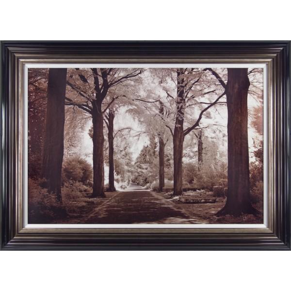 Ily Szilagyi  - Arcadia Framed Print
