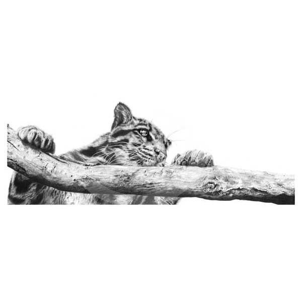 Jamie Boots - Clouded Judgement (Clouded Leopard)