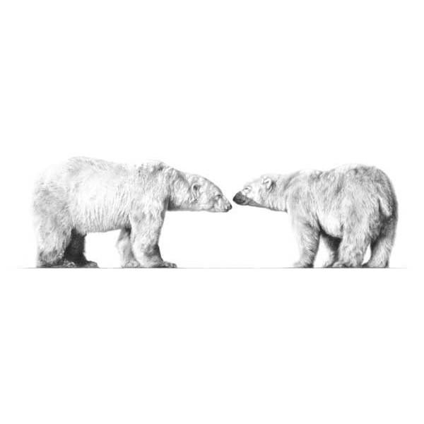 Jamie Boots - Cold Comfort (Polar Bears)