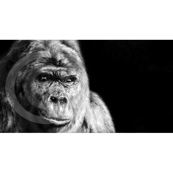 Jamie Boots - Contemplation (Gorilla)
