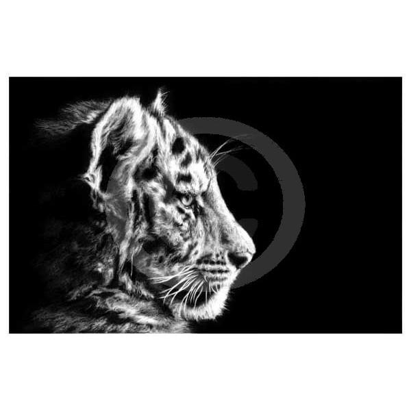Jamie Boots - Soft Focus (Siberian Tiger)