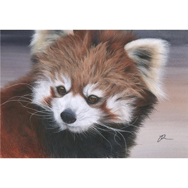 Julia Ruffles - Little Flame (Red Panda)