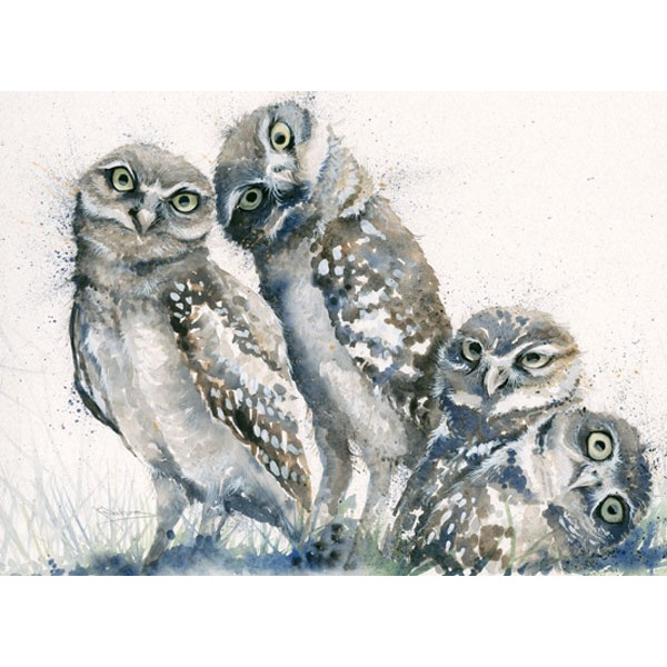 Kay Johns - A Family Portrait (Owls)