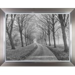 Lars Van De Goor - Well Travelled Framed Print