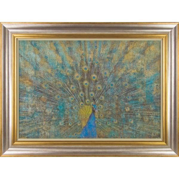 Linda Omelianchuk - Peacock Framed Print