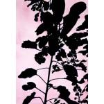 Lisa McPhie - Pink Plant