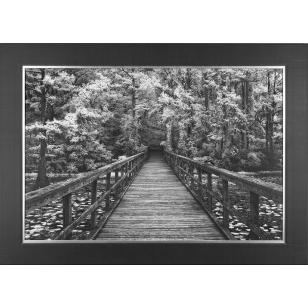 Mike Jones - A Walk Into Tranquility Framed Print