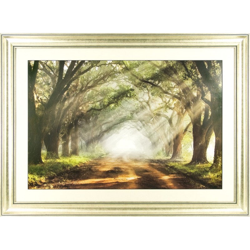 Mike Jones - Evergreen Plantation Framed Print