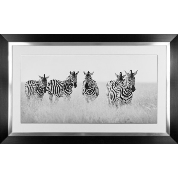 Nina Papiorek - Meeting Place Framed Print