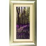 Rory Gullan - Lavender Fields I Framed Print