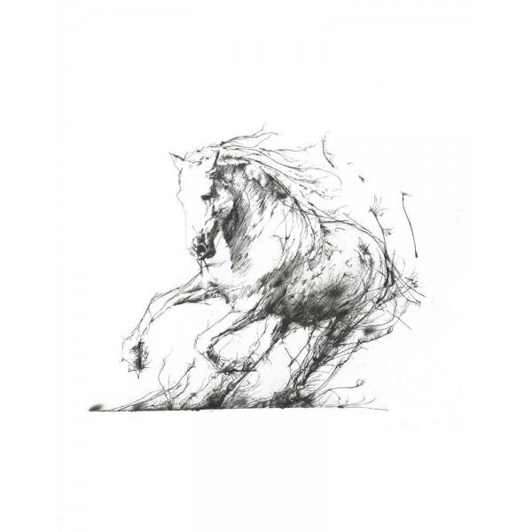 Scott Tetlow - Freedom
