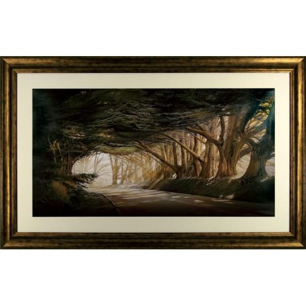 William Vanscoy - Inside A Dream Framed Print