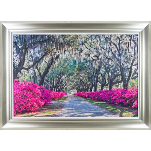 Winthrope Hiers - Azalea Avenue Framed Print